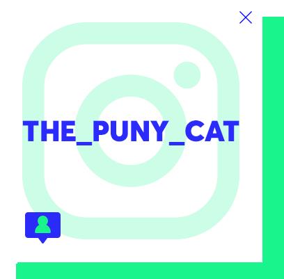 the_puny_cat Aistė Šriupšaitė)