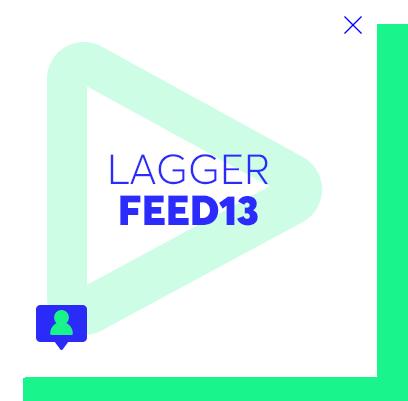 LaGGer Feed13