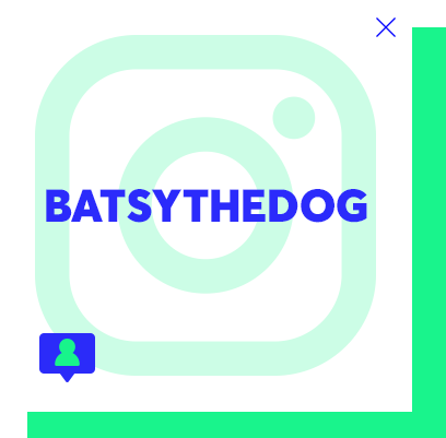 batsythedog