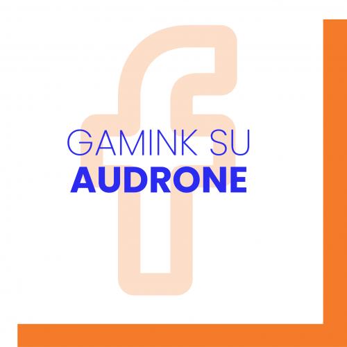 Gamink su Audrone